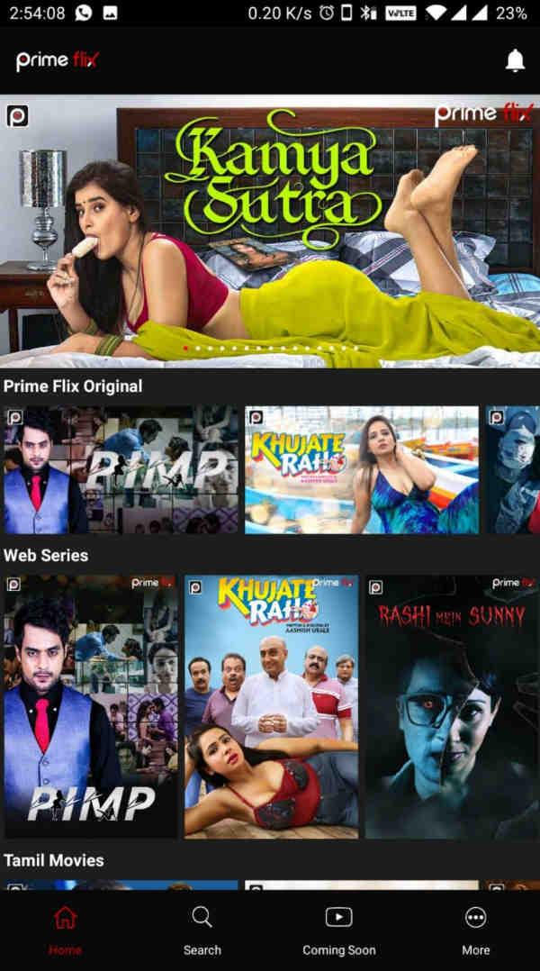Prime Flix (MOD, Premium Unlocked) – 18+ Web Series